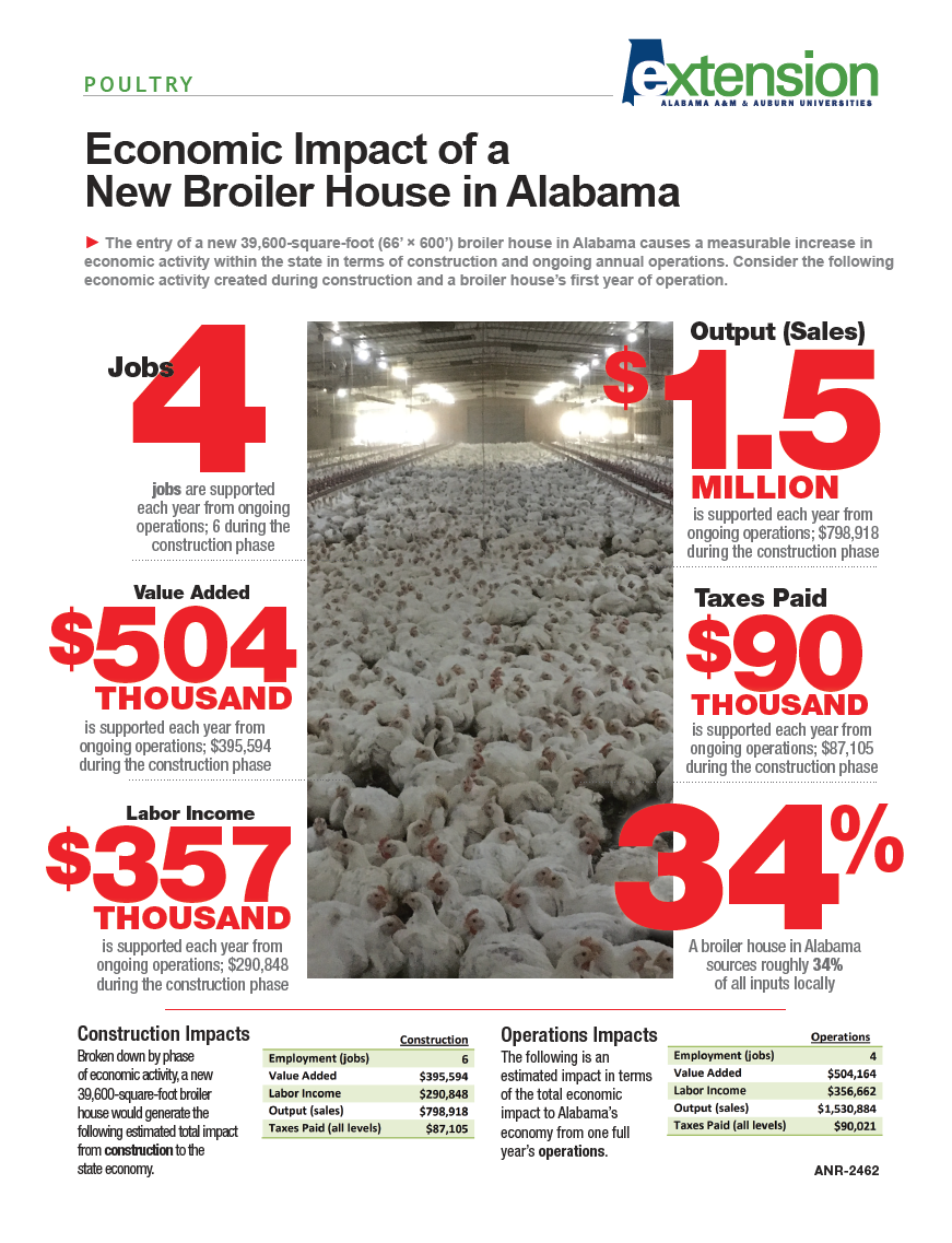 Economic Impact of Broilers  Decision Innovation Solutions