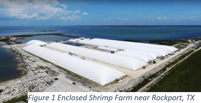 Shrimp Aquaculture Facility